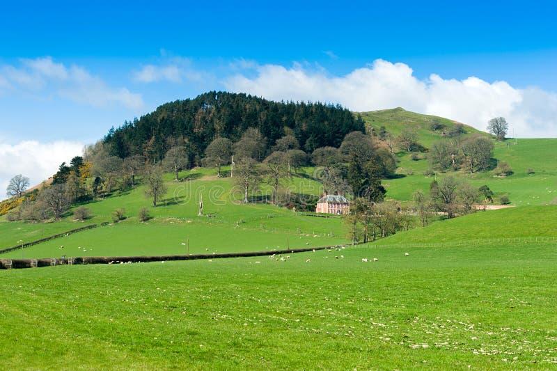 Plattelandslandschap het Noord- van Wales stock afbeelding