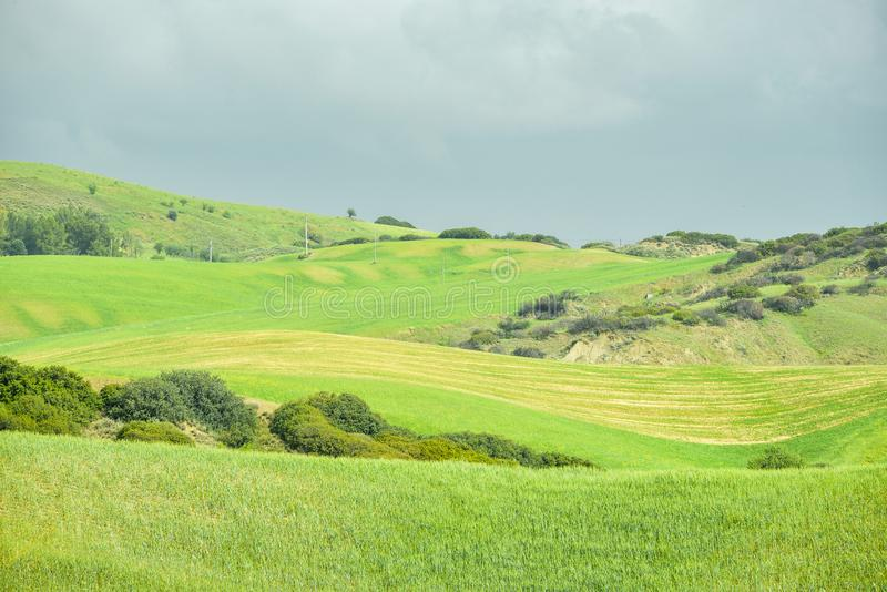 Plattelandslandschap op de weg aan Craco in Val D ` Agri stock foto's