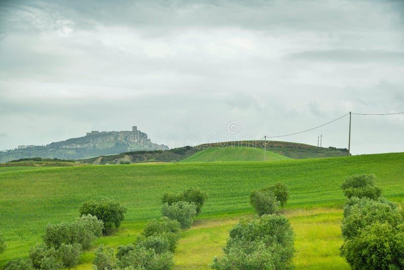 Plattelandslandschap op de weg van Matera aan Montescaglioso stock afbeeldingen