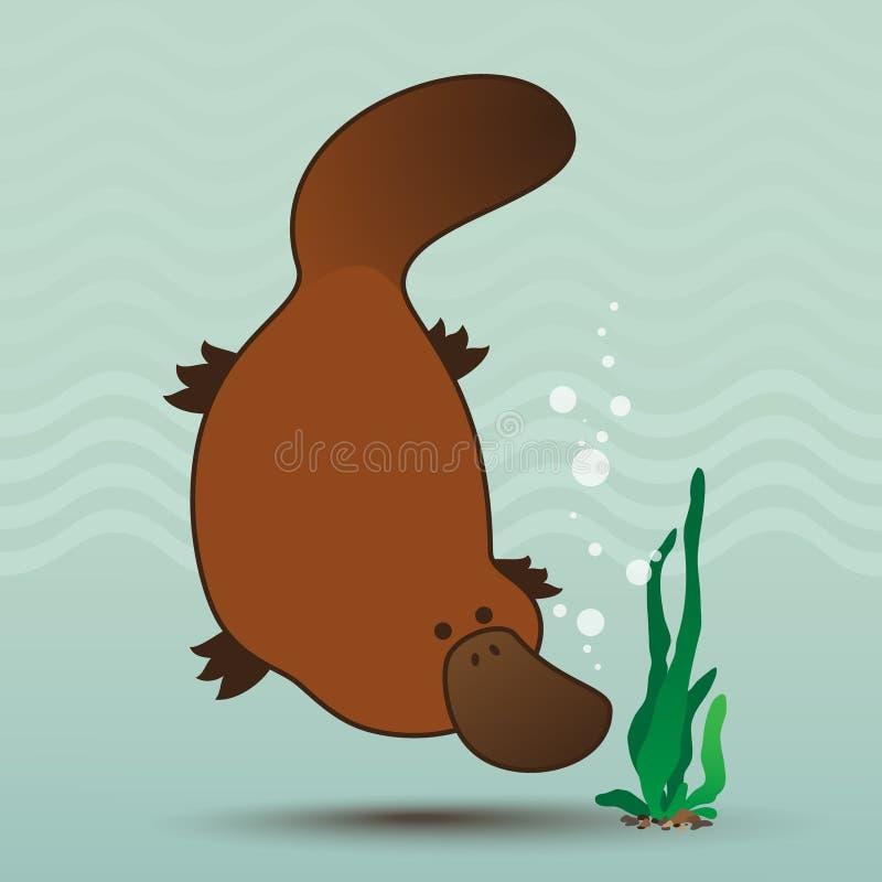 platypus ilustracji