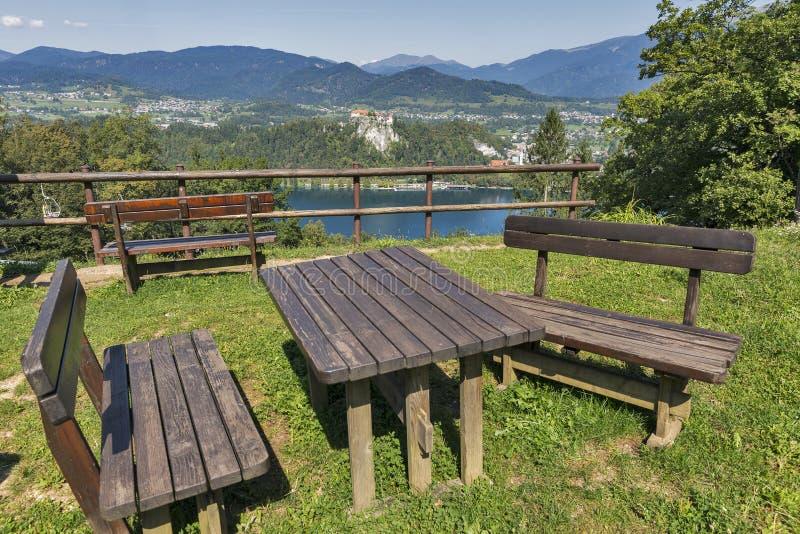 Platz mit Vogelperspektive über See blutete, Schloss und Alpen stockbilder