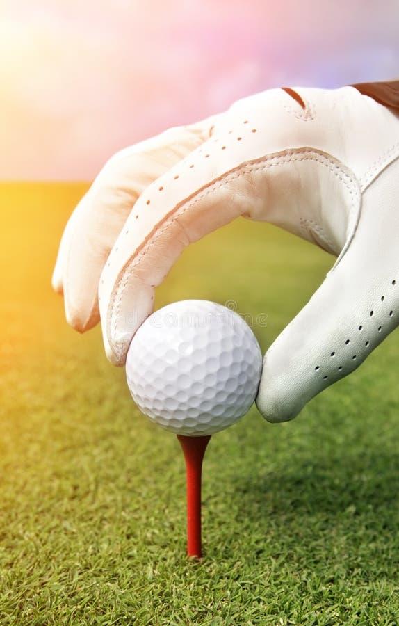 Platzieren des Golfballs auf ein T-Stück stockfotos