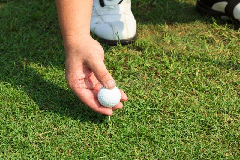 Platzieren des Golfballs auf ein T-Stück stockfotografie