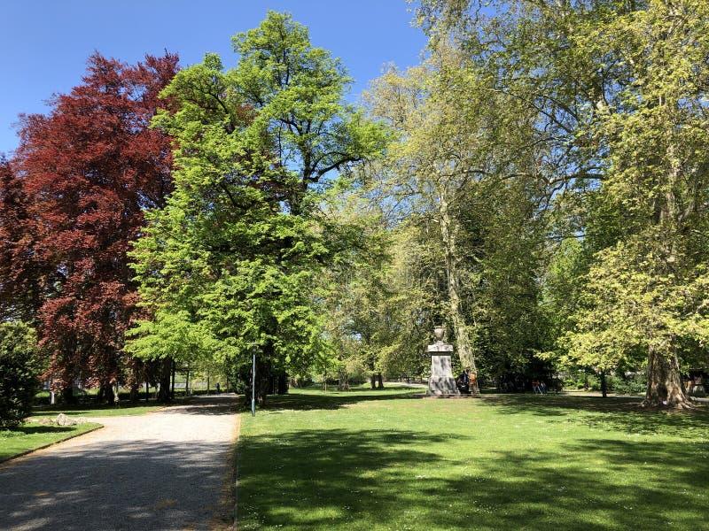 Platzspitz - parc avec un pass? turbulent dans la ville de Zurich image libre de droits