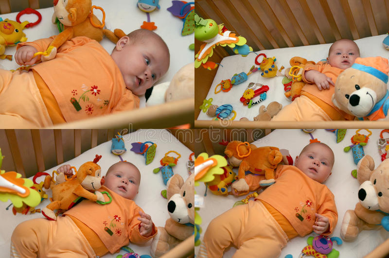 Download Play time stock photo. Image of playing, monkey, newborn - 21551222