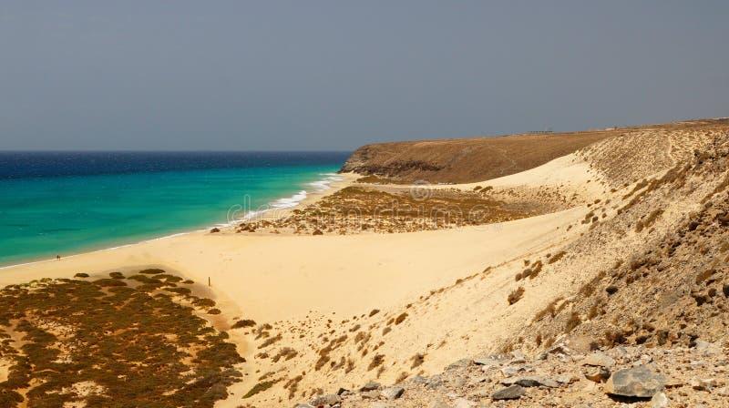 Playa处女的Sotavento -,狂放的海滩在费埃特文图拉岛,加那利群岛,西班牙 免版税库存照片