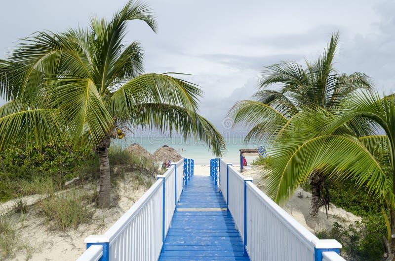 Playa毛发在Cayo吉列尔莫 库存照片