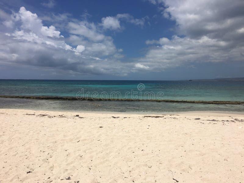 Playa石灰岩礁牙买加 库存图片