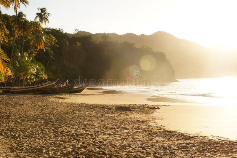 PLAYA麦地那,加勒比海滩 库存图片