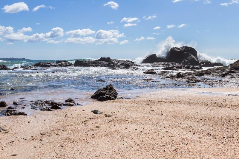 Playa большое, Коста-Рика стоковая фотография rf