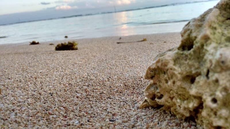 Playa stockbilder
