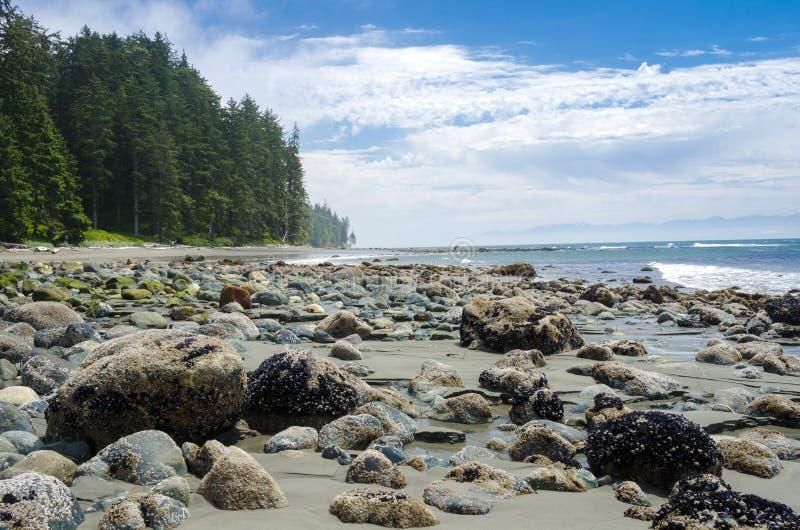 Playa abandonada en Sooke, A.C., Canadá, y cielo azul con las nubes imágenes de archivo libres de regalías