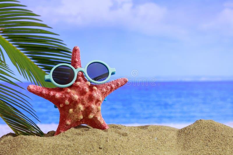 Playa arenosa del verano - copie el espacio fotos de archivo libres de regalías