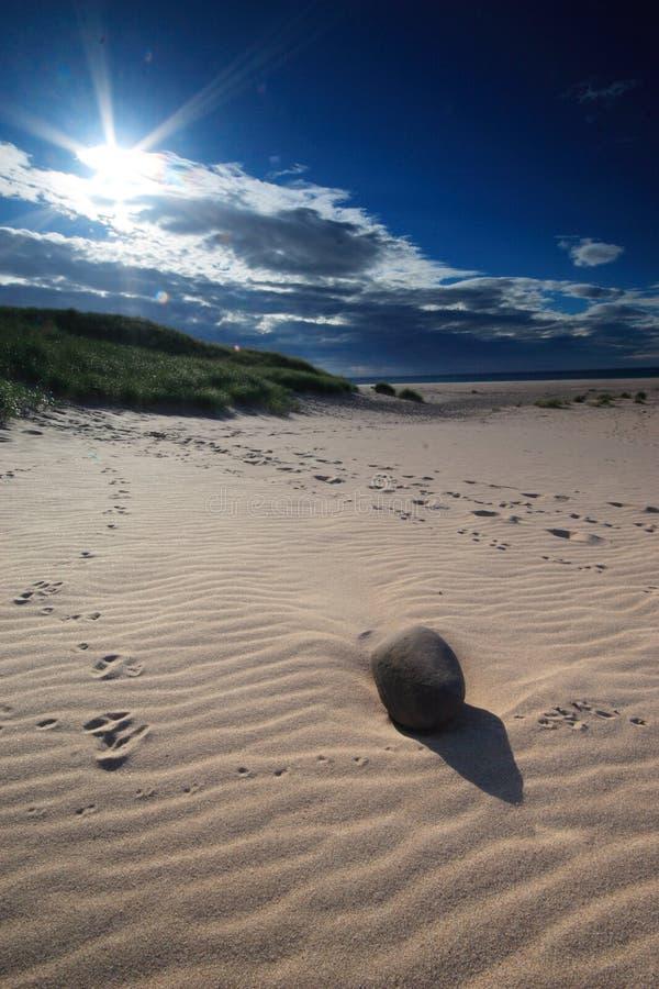 Playa arenosa Sunlit con el guijarro fotografía de archivo libre de regalías