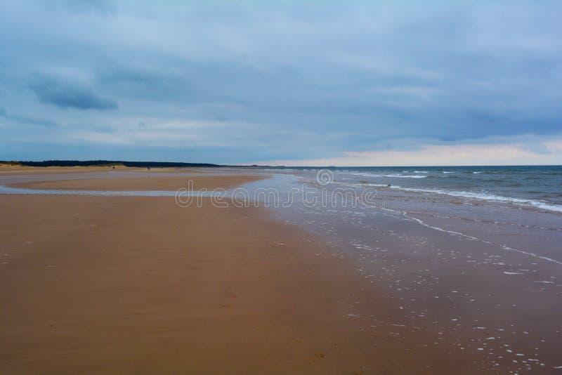 Playa arenosa y bosque largos en la distancia, mar septentrional, playa de Holkham, Reino Unido imagen de archivo