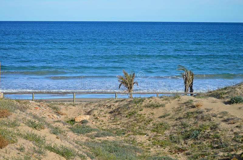 Playa azotada por el viento fotos de archivo libres de regalías