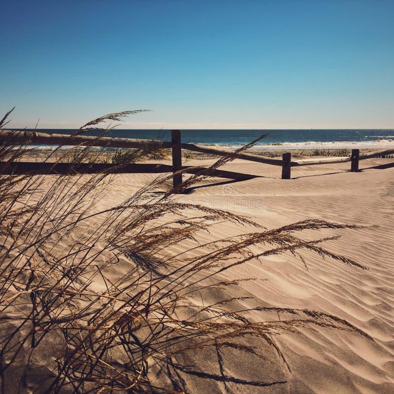 Playa azotada por el viento imagen de archivo