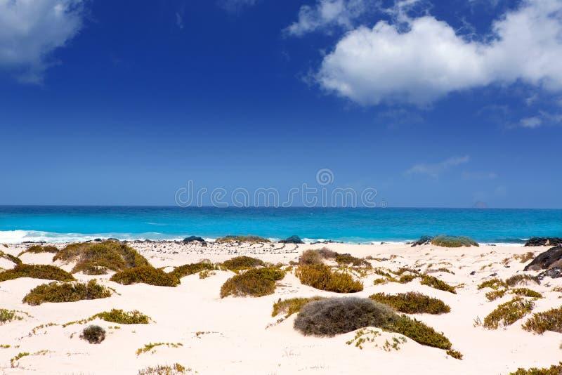 Playa blanca de la arena de Lanzarote Orzola en las Canarias foto de archivo libre de regalías