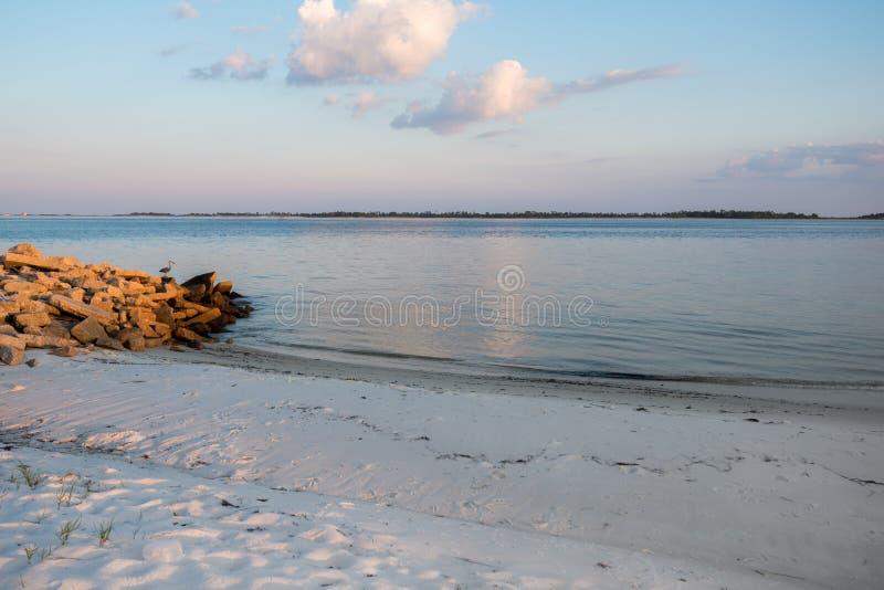 Playa blanca de la arena en la Florida con la garza y el océano del gran azul fotos de archivo