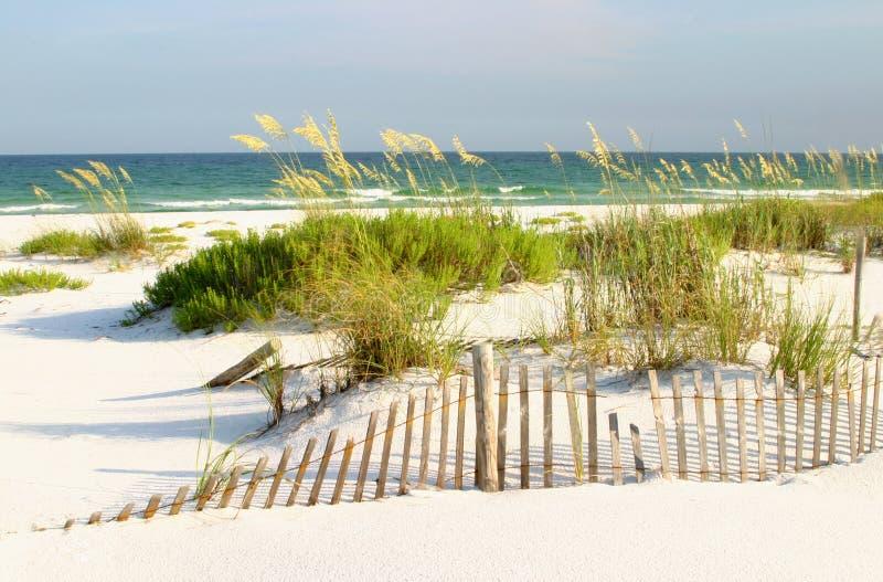 Playa blanca de la arena, golfo de México fotografía de archivo