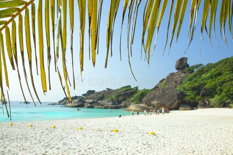 Playa blanca de la arena, laguna del para?so Hoja de palma Gente en la playa fotos de archivo