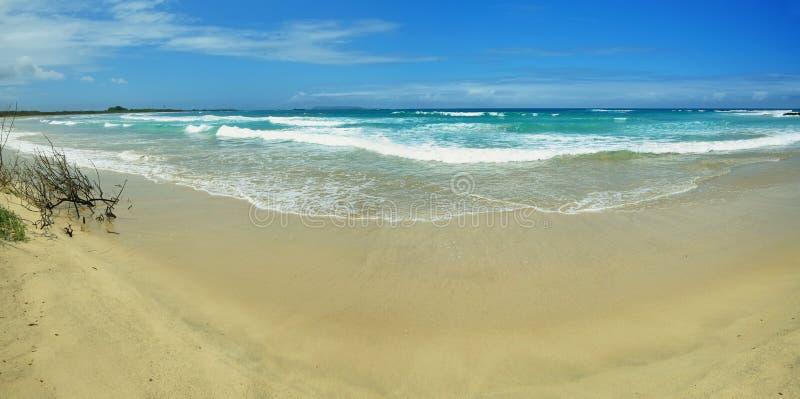 Playa blanca hermosa de la arena en las islas de las Islas Galápagos, Ecuador fotos de archivo