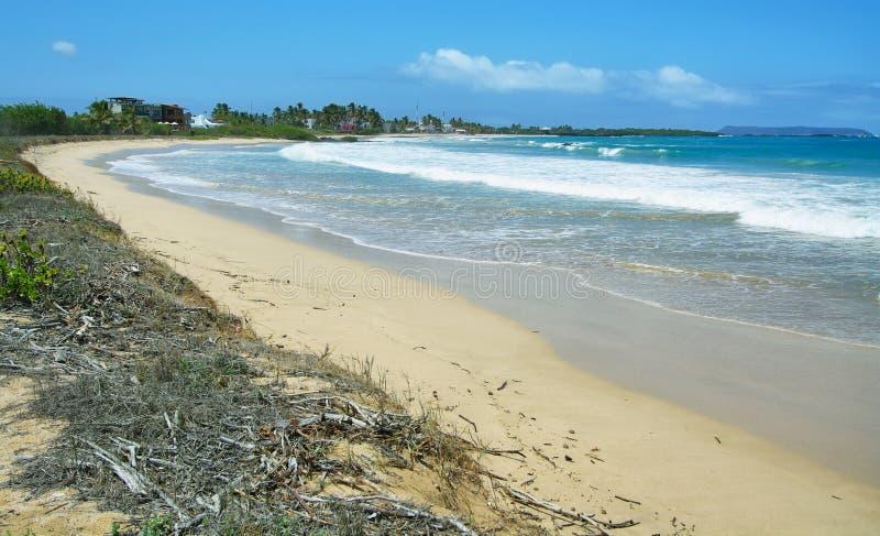 Playa blanca hermosa de la arena en las islas de las Islas Galápagos, Ecuador foto de archivo libre de regalías