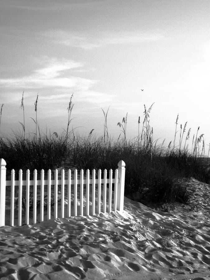 Playa blanco y negro imagenes de archivo