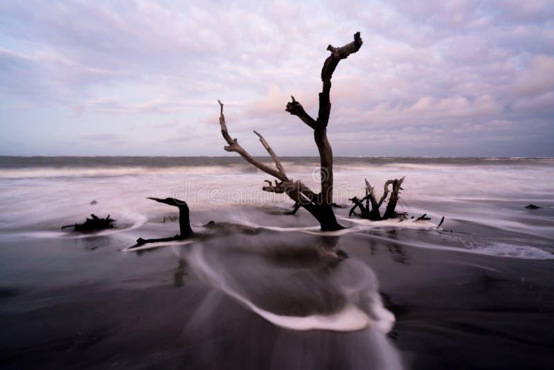 Playa Boneyard de la locura foto de archivo libre de regalías