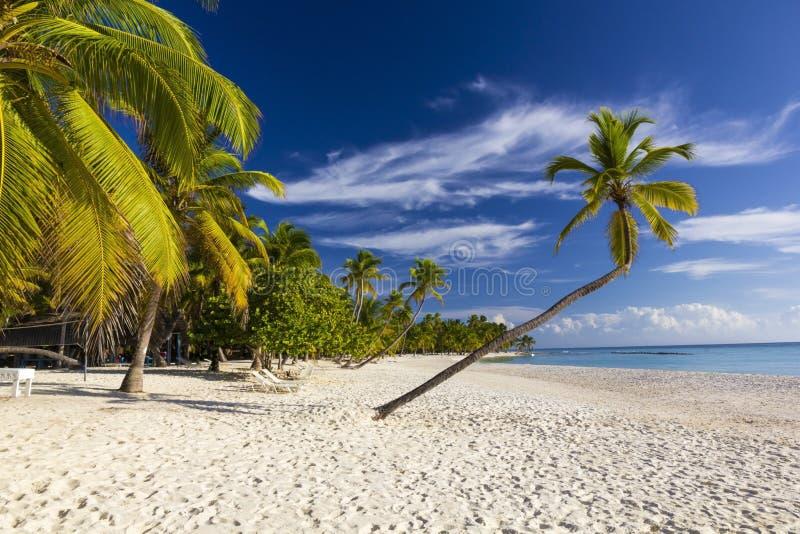 Playa Bonita en Isla Saona foto de archivo libre de regalías