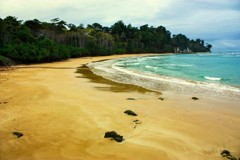 Playa con el cielo nublado y el bosque enorme imagen de archivo libre de regalías