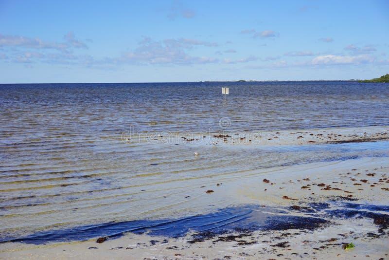 Playa contaminada imagenes de archivo