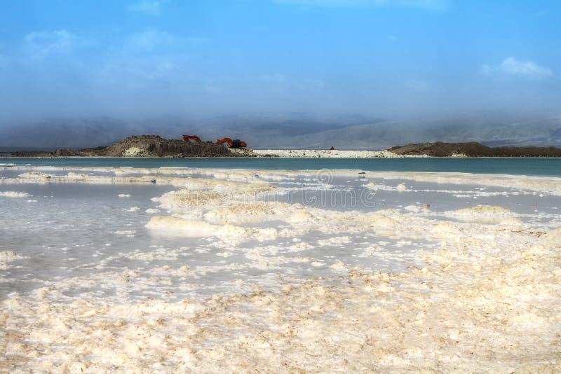 Playa cristalina de la sal en la costa de mar muerta, Israel fotos de archivo libres de regalías