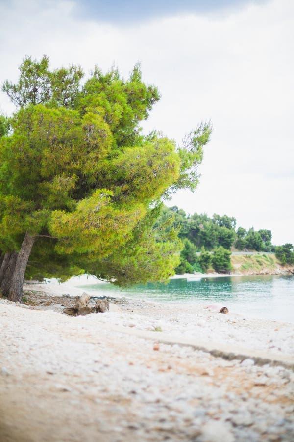 Playa croata imagen de archivo