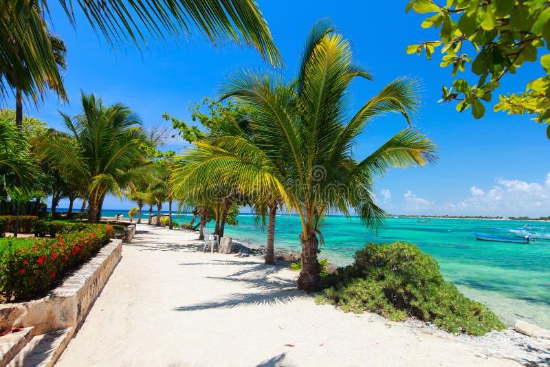 Playa de Akumal en México imagen de archivo libre de regalías
