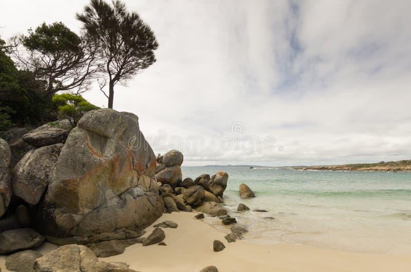 Playa de Allports, isla del Flinders, Tasmania fotografía de archivo