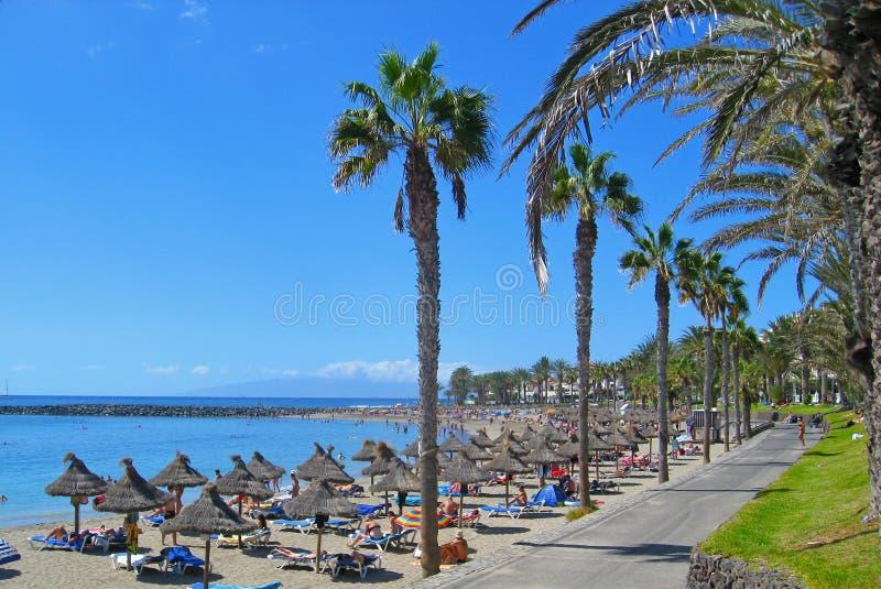 Playa de Américas de los las de Playa de en Tenerife, isla canaria, España foto de archivo
