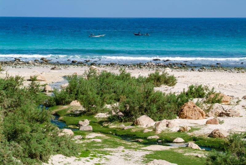 Playa de Arher en la isla de Socotra, Yemen fotos de archivo
