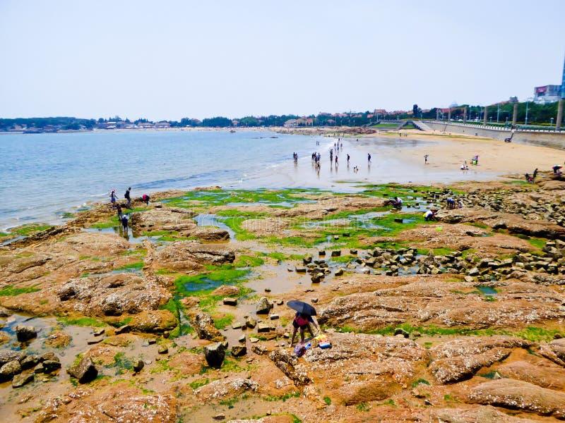 Playa de baño de la ciudad de Qingdao imagen de archivo libre de regalías