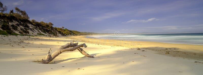 Playa de Bherwerre de la bah?a de la abundancia, parque nacional de Boodero, Jervis Bay, ACTO, Australia fotos de archivo libres de regalías