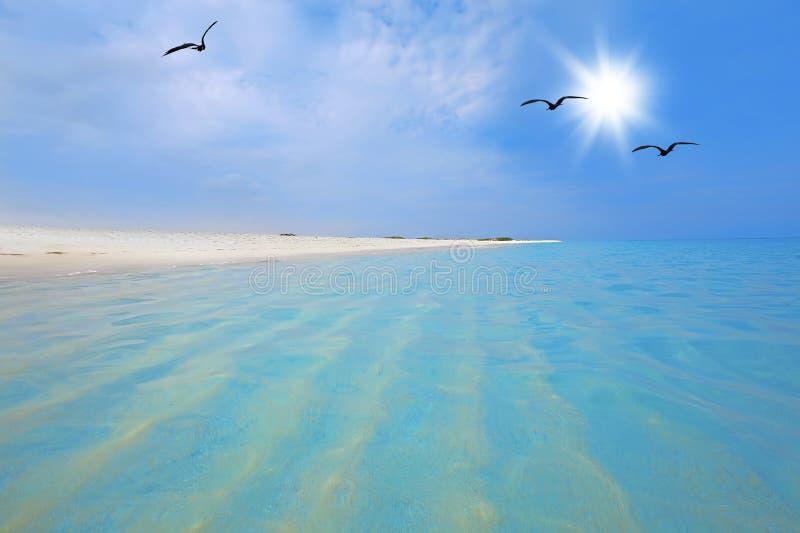 Playa de Boca Grandi imágenes de archivo libres de regalías