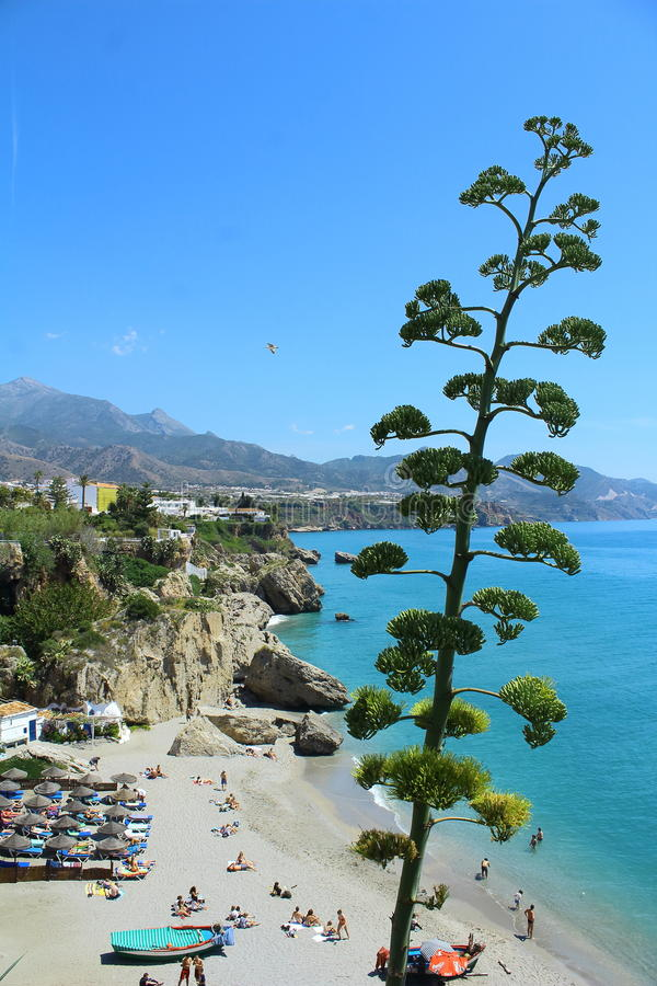 Playa de Calahonda en España foto de archivo libre de regalías