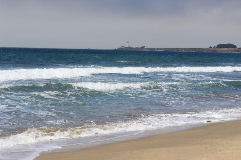 Playa de California con la planta de siglo foto de archivo libre de regalías