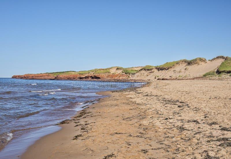 Playa de Cavendish con las dunas de arena y los acantilados de la piedra arenisca roja foto de archivo