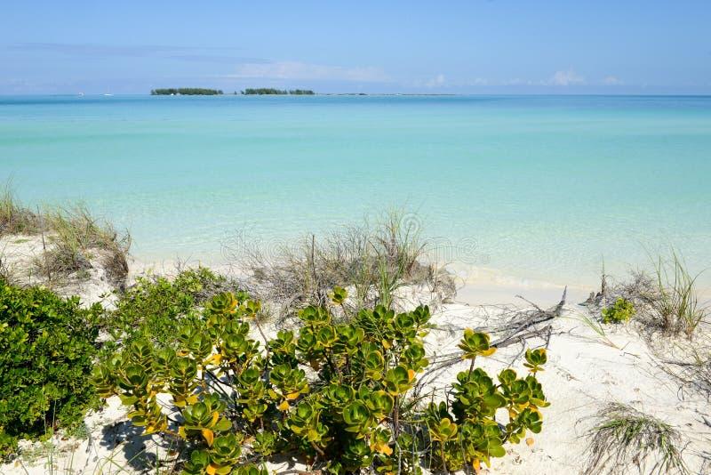 Playa de Cayo Guillermo, Cuba foto de archivo libre de regalías