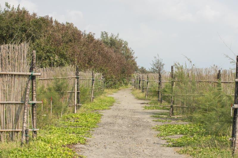 Playa de Chiumaoyuan en Taiwán imágenes de archivo libres de regalías