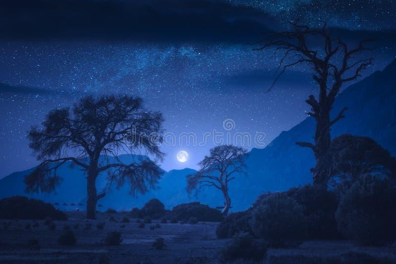 Playa de Cirali en la noche foto de archivo