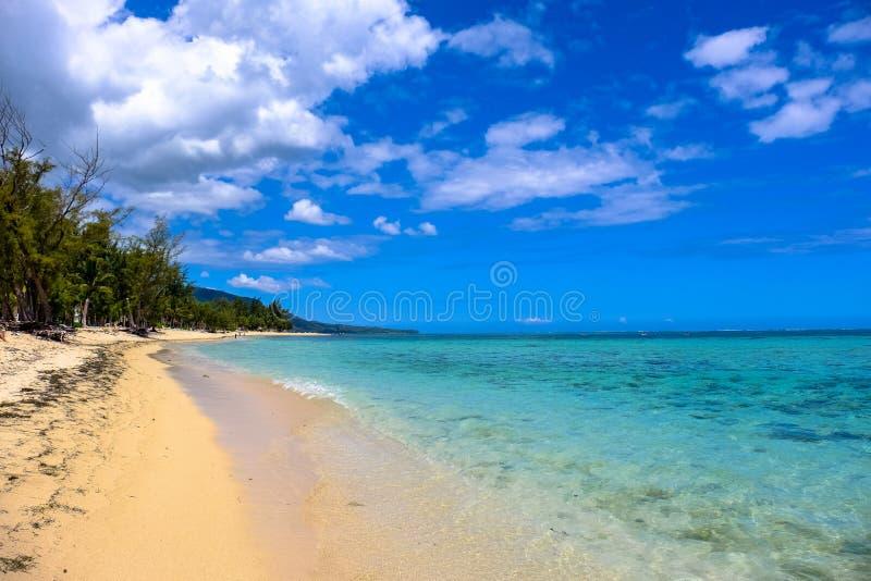 Playa de Clearwater cerca de la orilla con los árboles y las nubes en un cielo azul en el fondo imagen de archivo