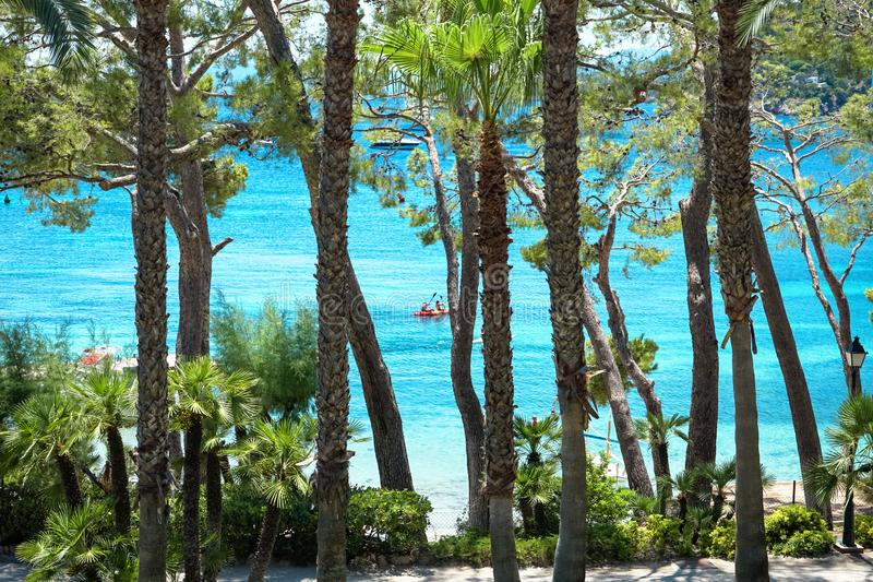 Playa de Formentor Cala Pi de la Posada, playa hermosa en el casquillo Formentor, Palma Mallorca, España fotografía de archivo libre de regalías
