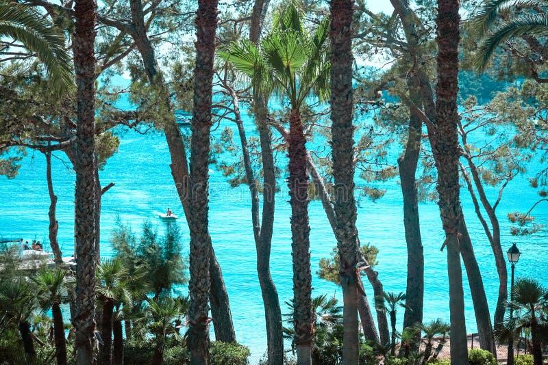 Playa DE Formentor Cala Pi DE La Posada, mooi strand bij GLB Formentor, Palma Mallorca, Spanje royalty-vrije stock foto
